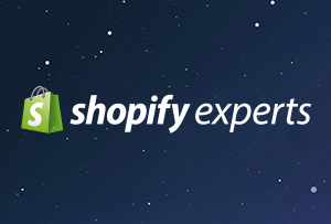 Lightyear Shopify Experts
